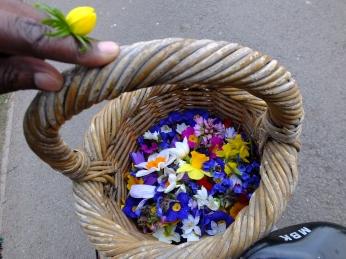 spring-flowers01