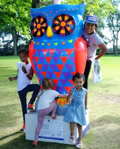 owl group