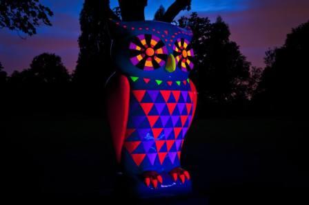 UV Owl