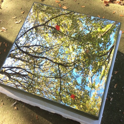 Autumn-reflections1