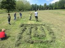 grass-maze-blJPG