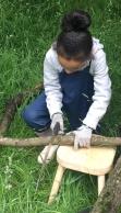 sawing-crop
